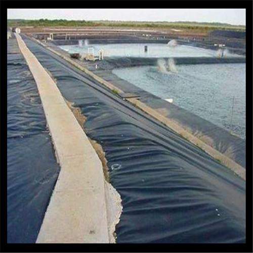 为什么说养鱼池必须进行防渗处理呢