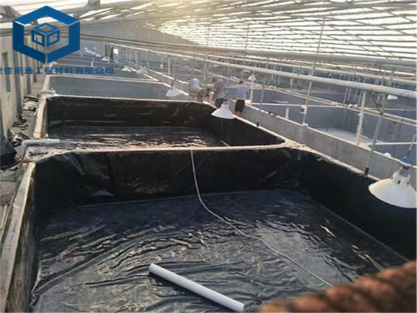 重庆鱼塘防渗膜应用于重庆大足小龙虾养殖