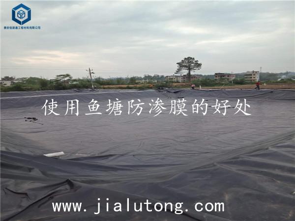 鱼塘防渗膜厂家